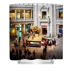 The Elephant In The Room Shower Curtain