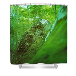 The Emerald Dream Shower Curtain