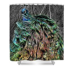 The Emperors Clothes Shower Curtain by Douglas Barnard