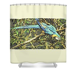 The Enchanted Jungle Shower Curtain
