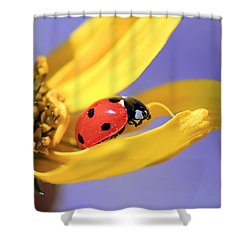 The End Shower Curtain by Donna Kennedy