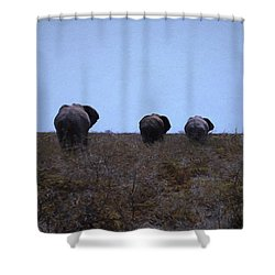 Shower Curtain featuring the digital art The End by Ernie Echols
