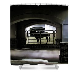 The End Of Excitement Shower Curtain by Douglas Barnard