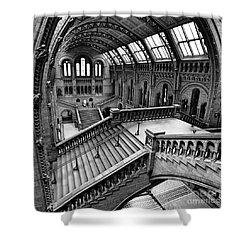 The Escher View Shower Curtain by Martin Williams
