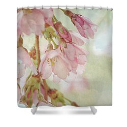 Shower Curtain featuring the photograph The Essence Of Springtime  by Connie Handscomb