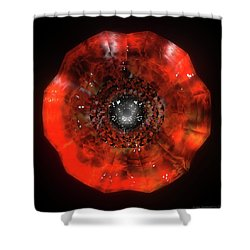 The Eye Of Cyma - Fire And Ice - Frame 40 Shower Curtain