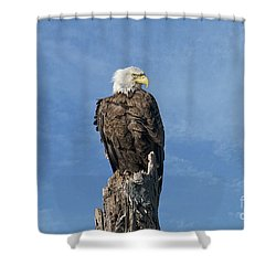 The Eye Of Freedom Shower Curtain