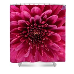 The Eye Of Pink Flower Shower Curtain