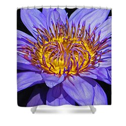 The Eye Of The Water Lily Shower Curtain