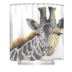 Shower Curtain featuring the drawing The Eyes Have It by Phyllis Howard
