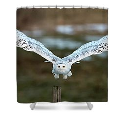 The Eyes Of Intent Shower Curtain