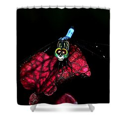 Shower Curtain featuring the photograph The Face Of A Dragonfly 004 by George Bostian