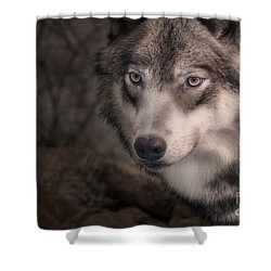 The Face Of Teton Shower Curtain by William Fields