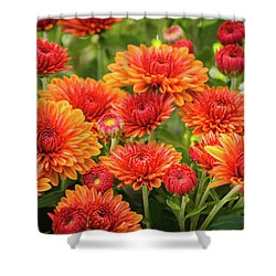 Shower Curtain featuring the photograph The Fall Bloom by Bill Pevlor