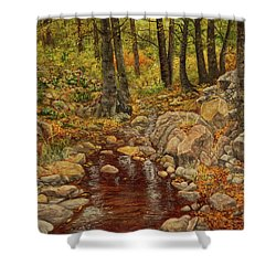 Shower Curtain featuring the painting The Fall Stream by Roena King