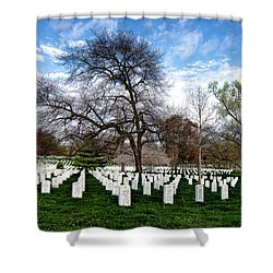 The Fallen Shower Curtain