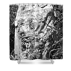 The Fallen - Unhidden Door Shower Curtain
