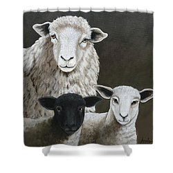 The Family - Sheep Oil Painting Shower Curtain