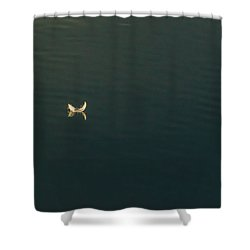 The Feather 2 Shower Curtain by Timothy Latta
