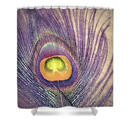 The Feather In Colour Shower Curtain