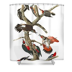Shower Curtain featuring the photograph The Fight by Munir Alawi