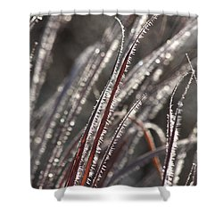The First Frost Shower Curtain