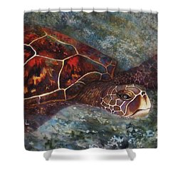 The First Honu Shower Curtain by Kerri Ligatich