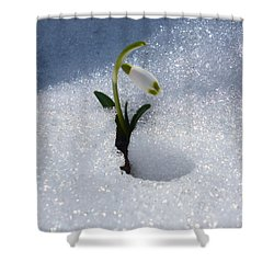 The First One Shower Curtain
