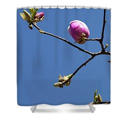 The First To Bloom Shower Curtain