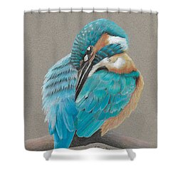 The Fisherking Shower Curtain by Gary Stamp