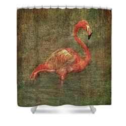 Shower Curtain featuring the photograph The Flamingo by Hanny Heim