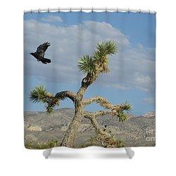 Shower Curtain featuring the photograph The Flight Of Raven. Lucerne Valley. by Ausra Huntington nee Paulauskaite