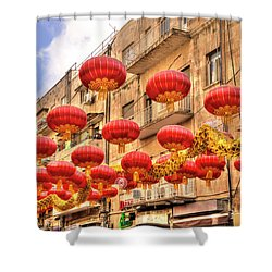 The Flying Dragon Shower Curtain