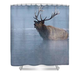 The Foggy Bugle Shower Curtain by John De Bord