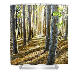 The Forest And The Trees Shower Curtain