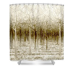 The Forest For The Trees Shower Curtain by Holly Kempe