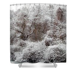 Shower Curtain featuring the photograph The Forest Hush by Lynda Lehmann