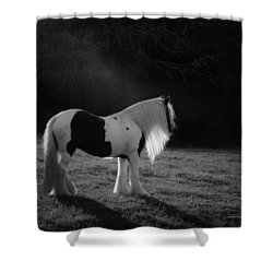 The Forest Moonlight Shower Curtain