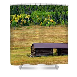 The Forgotten Barn Shower Curtain