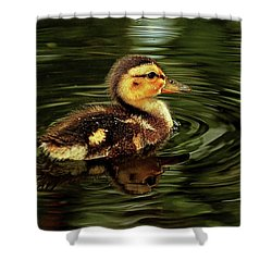 The Formative Years Shower Curtain