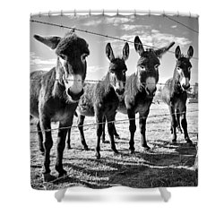 Shower Curtain featuring the photograph The Four Amigos by Sharon Jones