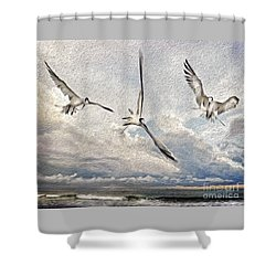 The Freedom Of Flight Shower Curtain