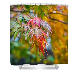 The Freshness Of Fall Shower Curtain by Ken Stanback