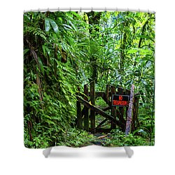 The Friendly Forest Shower Curtain
