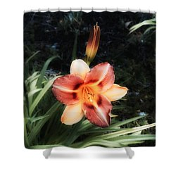 The Garden At St. Stephen's- May 2016 Shower Curtain