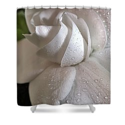 The Gardenia Shower Curtain