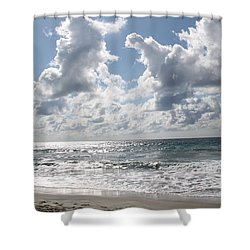 The Gate Way To Heaven Shower Curtain