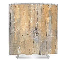 The Gated Door II Shower Curtain