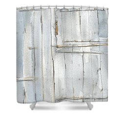 The Gated Door Shower Curtain
