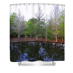The Gator Hole At Green Cay In Florida Shower Curtain